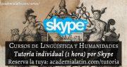 Tutoría individual de 1 hora por Skype